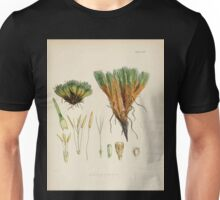 The botany of the Antarctic voyage of H M  discovery ships Erebus and Terror in the Years 1839 1843 Joseph Dalton Hooker V1 036 Unisex T-Shirt