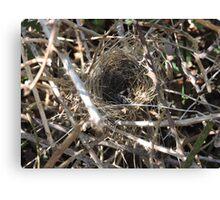 The Nest Canvas Print