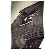 Tree Inside Abandoned Building B&W Poster