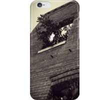 Tree Inside Abandoned Building B&W iPhone Case/Skin