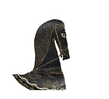 ancient greek horse Photographic Print