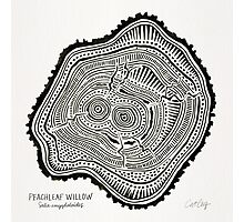 Peachleaf Willow – Black Ink Photographic Print