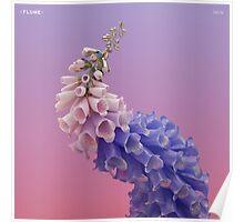 Flume Skin Poster