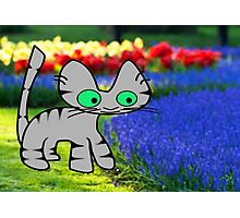 Cat Enjoys The Garden Photographic Print