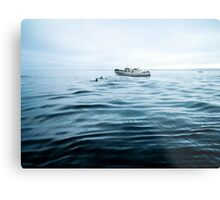 Dolphins in open sea Metal Print