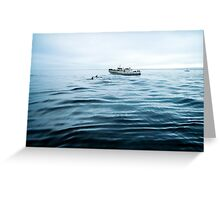 Dolphins in open sea Greeting Card