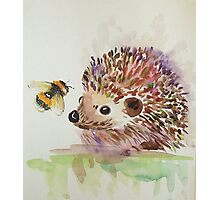 Hedgehog and Bumble bee  Photographic Print