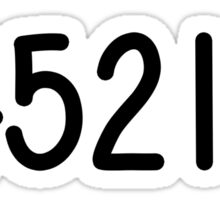 Chippewa Ranch Camp 54521 Sticker