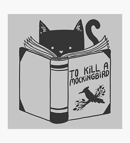 To Kill a Mockingbird Photographic Print