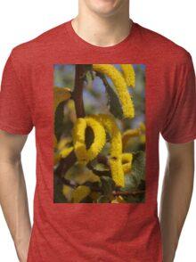 Acacia denticulosa Tri-blend T-Shirt