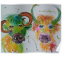 Colourful Quirky Cows Poster