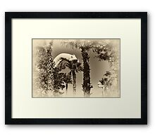 When Dinosaurs Walked The Earth Framed Print