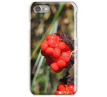 Red Berries on a Bush iPhone Case/Skin