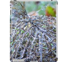 Bright Brush iPad Case/Skin