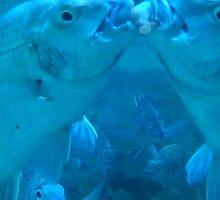fish kiss Sticker