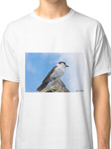 Gray Jay With Blue Sky Background Classic T-Shirt