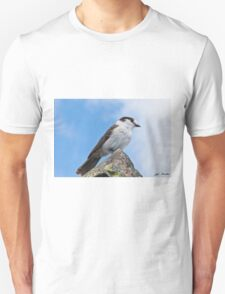 Gray Jay With Blue Sky Background Unisex T-Shirt