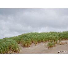 Sand Dunes and Grass Photographic Print