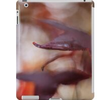 Liquidambar in the rain iPad Case/Skin
