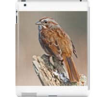 Song Sparrow on a Driftwood Perch iPad Case/Skin