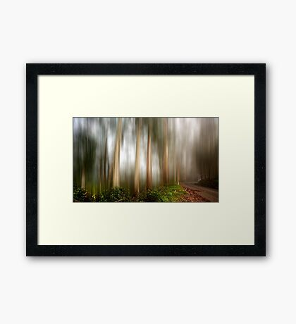Mystery forest Framed Print