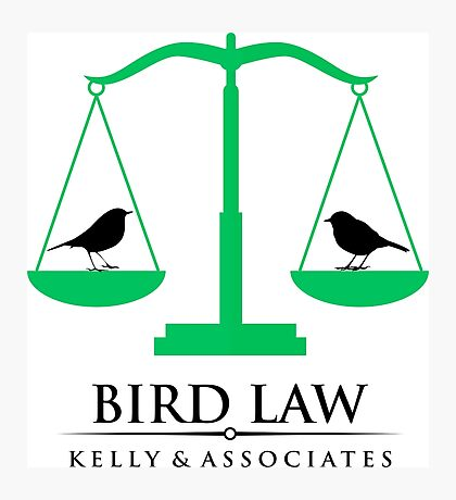 bird law Photographic Print