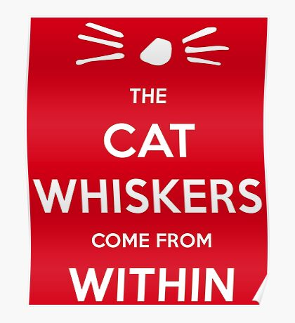 Whiskers Within Cat Poster