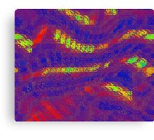 Multi Color Abstract Canvas Print