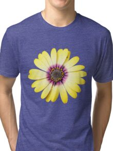 Purple and Gold Tri-blend T-Shirt