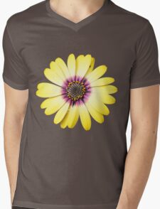 Purple and Gold Mens V-Neck T-Shirt
