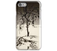 Shifting Sands iPhone Case/Skin