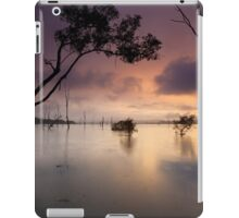 Flooded valley iPad Case/Skin