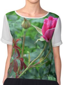 Pink roses in the garden. natural background. Chiffon Top