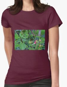 Pink roses in the garden. natural background. Womens Fitted T-Shirt