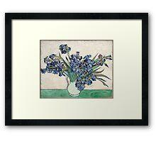 Vincent van Gogh Irises Framed Print