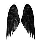 Dark Wings by VampicaX