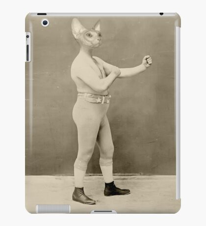 Temple Boxer iPad Case/Skin