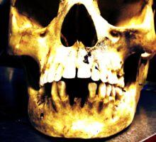 Industrial Skull Sticker