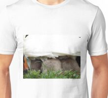 Beautiful Cygnets tucking underneath Mothers wing Unisex T-Shirt