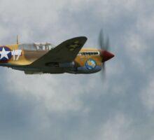 Curtiss P40F  Kittyhawk  Lees Hope Sticker