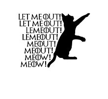 Let me out...Lemeout...Meout...Meow Photographic Print