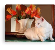 Snowball and the Tulips Canvas Print
