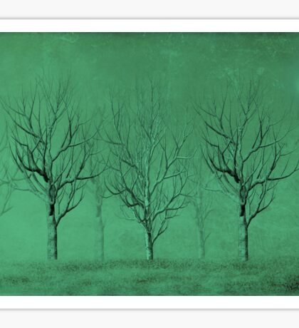 Winter Trees in the Mist Sticker