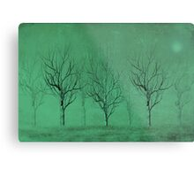 Winter Trees in the Mist Metal Print