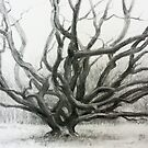 Winter Oak by irenebutcher