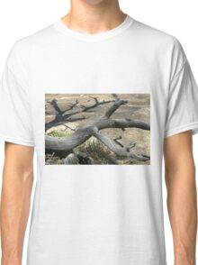 Canyonlands 49 Classic T-Shirt
