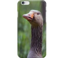 Head of a  greylag goose iPhone Case/Skin