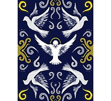 Doves Patterns Photographic Print