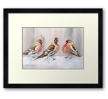 Red Birds in A Row In The Snow - Winter Red Poll Painting Framed Print