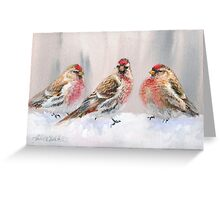 Red Birds in A Row In The Snow - Winter Red Poll Painting Greeting Card